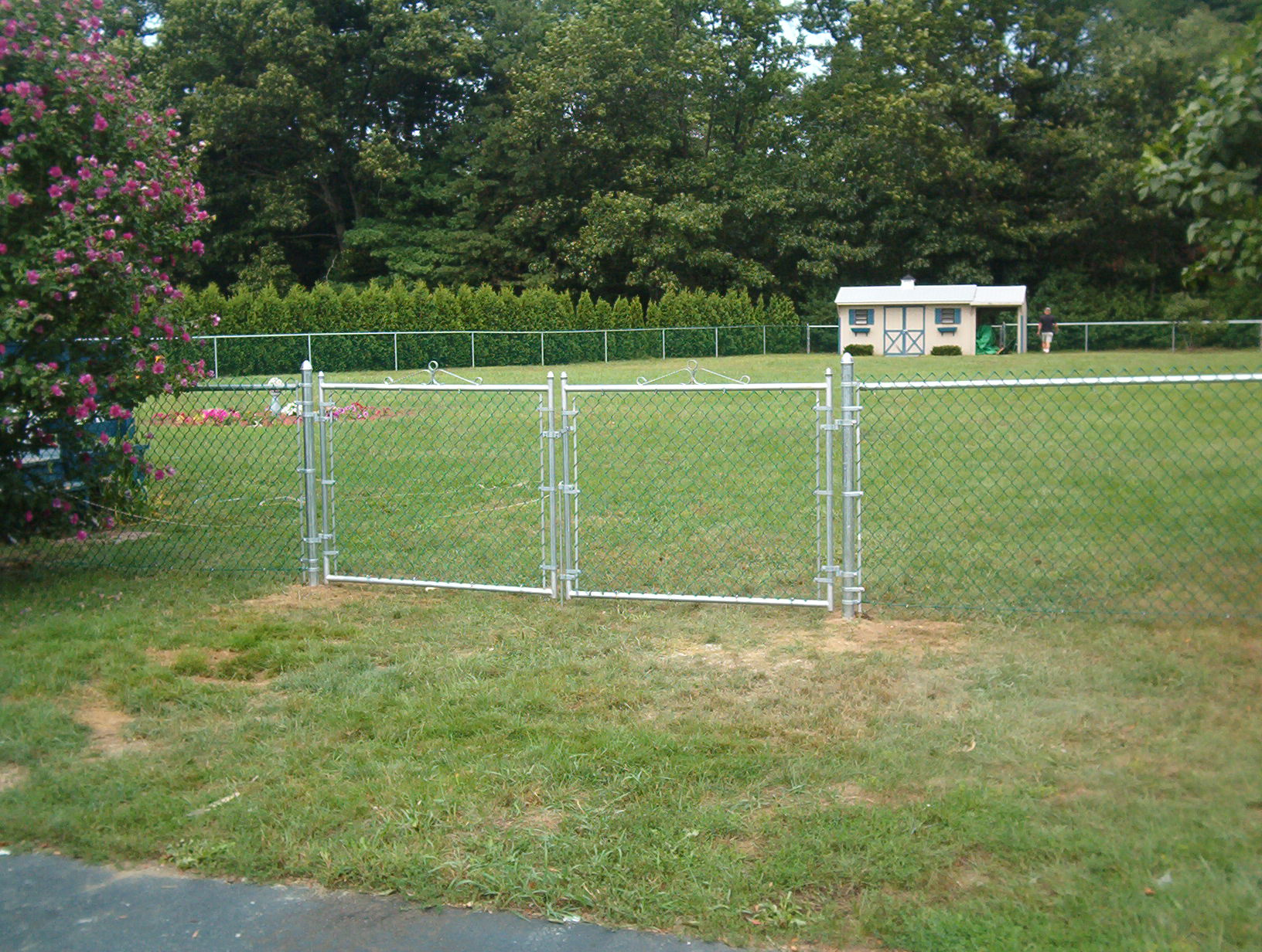 Chain Link Fence Backyard Fence Company